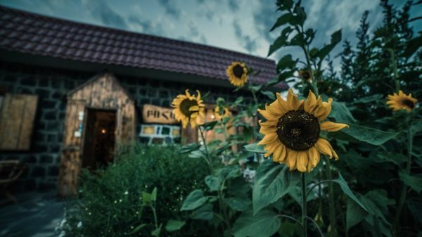 Բիզնեսը մարզերում․ փոքր տարածքից՝ բոհեմյան միջավայր․ «Բոհեմ արվեստանոց-թեյարան». Գոհար Մնացականյան